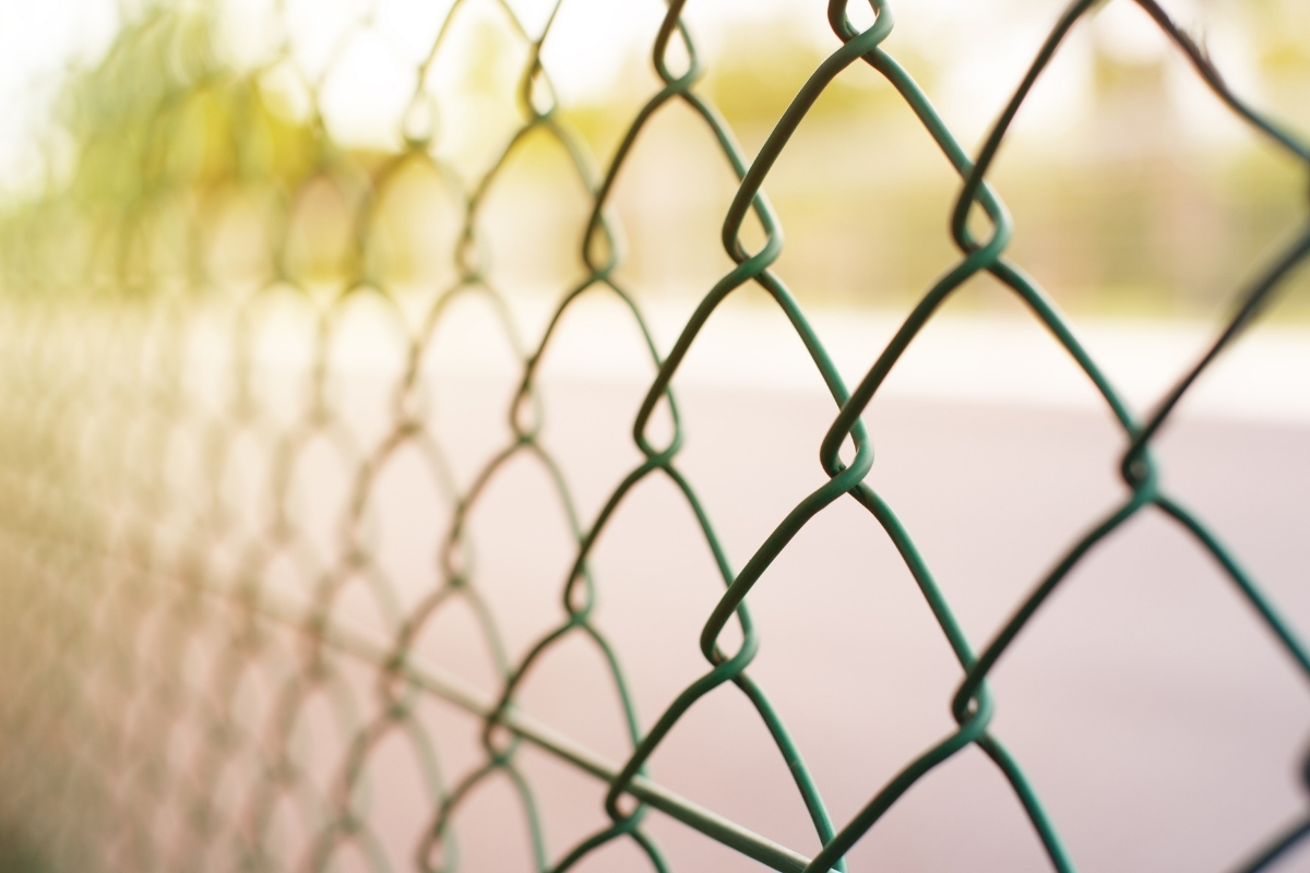 Can Coyotes Jump Fences Important Things To Consider