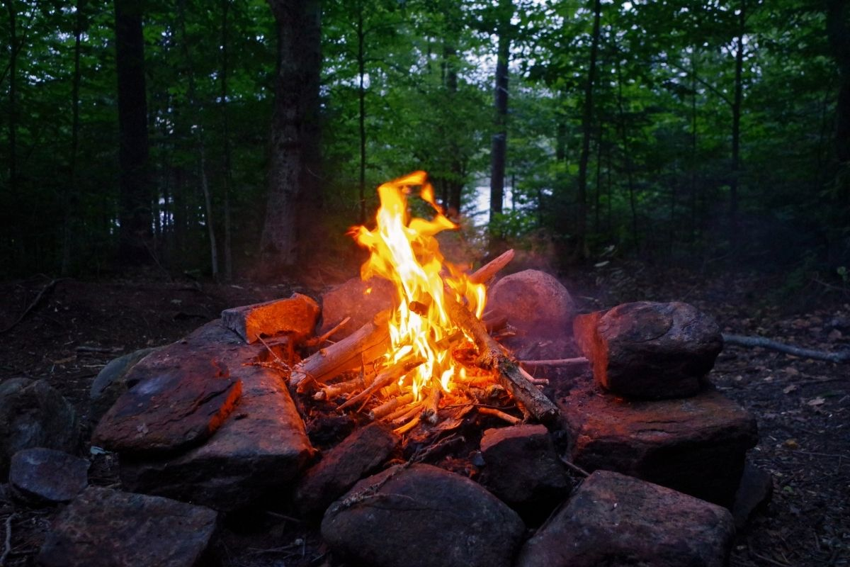 Does Campfire Smoke Scare Deer?